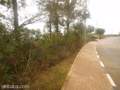 A plot for sale in Kigali - Remera - 100 000 000 RWF : Terrains à Vendre, Louer, Batir - Kigali RW