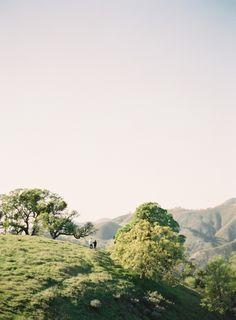 Santa Ynez Engagement .: