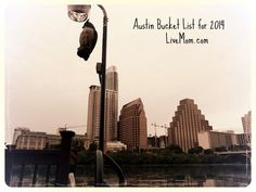 2014 Austin Bucket Lists Year in Review