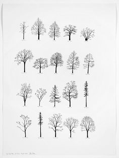 Katie Holten - New York Trees II