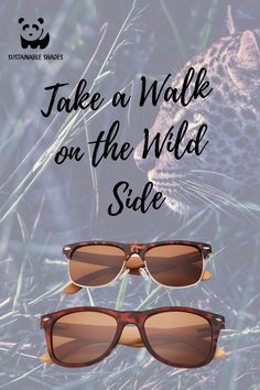 Stand out this Summer with our wild shades! When you look good, you feel good! Finding Treasure, Feel Good, Sustainability, How Are You Feeling, Shades, Sunglasses, Feelings, Frame, Summer