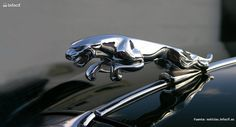 La historia de Jaguar