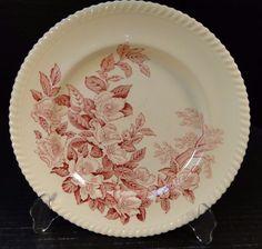 "Johnson Brothers Windsor Ware Apple Blossom Pink Dinner Plate 10"" EXCELLENT! #JohnsonBros"