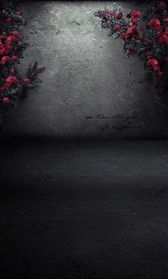 New Arrival Background Fundo Cement Wall With Flowers Width Backgrounds Lk 2234 Wallpaper Nature Flowers, Flowery Wallpaper, Flower Background Wallpaper, Flower Phone Wallpaper, Beautiful Nature Wallpaper, Rose Wallpaper, Cellphone Wallpaper, Flower Backgrounds, Colorful Wallpaper