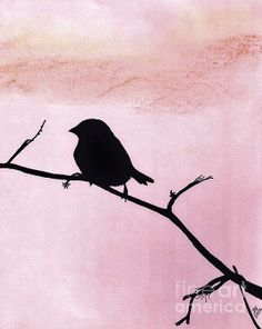 Pink Sparrow Silhouette by D Hackett