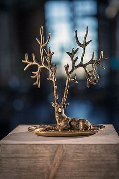 Deer antler jewelry holder – Greige Design  YES! Is $48 too much? I really love this.