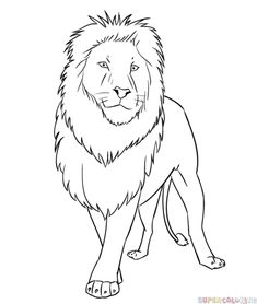 cartoon lion face roaring simple illustration of lion art