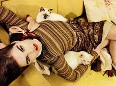 cat lounge