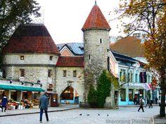 Medieval town Tallin Estonia (63 pieces)
