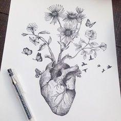 Les-dessins-de-nature-melee-de-Alfred-Basha-17