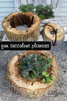 Realizzare un vaso con un tronco per decorare casa! Ecco 20 idee bellissime…