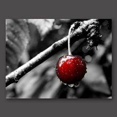 """Kirsche"" Foto Online, Shops, Cherry, House Styles, Google, Art, Pictures, Online Shopping, Cherries"