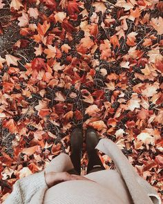 Find images and videos about autumn, fall and cozy on We Heart It - the app to get lost in what you love. Autumn Cozy, Fall Winter, Autumn Aesthetic, Seasons Of The Year, Autumn Photography, Fall Pictures, Hello Autumn, Autumn Inspiration, Fall Halloween