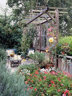 old windows create privacy screen for patio - I Have the perfect place for this! and the old windows!... It can also serve to protect plants from the weather... What a great idea!!!!
