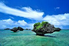 宮古島から4キロほど北に、大神島という小さな島が浮かんでいる。その北岸の海に点在するのが、まるでキノコのような形をしたご覧の奇岩群だ。
