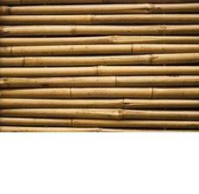 How to Make a Bamboo Headboard How to Make a Bamboo Headboard Related posts: DIY Farmhouse Planked Headboard DIY Headboard Project Ideas How to Make a DIY Tufted Headboard Sasaki Upholstered Panel Headboard Bamboo Headboard, Diy Tufted Headboard, Headboard Designs, Panel Headboard, Hawaiian Bedroom, Bamboo Furniture, Furniture Ads, Luxury Furniture, Office Furniture