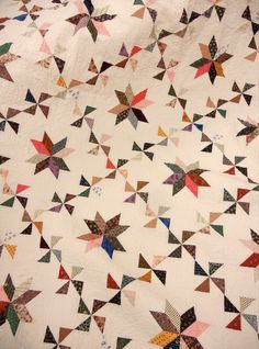 Sassafras.  Combination of pinwheels and stars against a pale background.  Makes an elegant quilt.