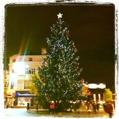 Lovely Christmas tree in Liverpool city centre. Liverpool City Centre, Liverpool Home, King John, Mount Pleasant, Love Home, Great Britain, Old Things, Christmas Tree, History