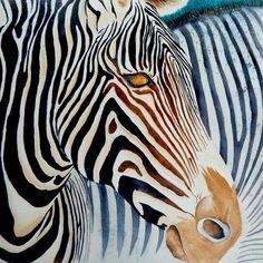 "ORIGINAL Watercolor Artwork Zebra African Wildlife Equine Horse 12x12"" #Realism"