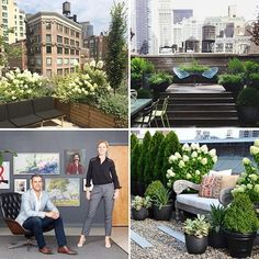 """New on the blog, we chat with Jacqueline and Damien Harrison of NYC landscape design firm @harrisongreennyc. What's their go-to tree for windy terraces? Favorite """"showstopper"""" flower? All this and more...Link in profile. Photos courtesy of Harrison Green. #landscapedesign #harrisongreen #urbangardening #urbangarden #thehorticult"""