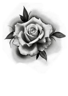 Plants, Art, Tattoo Ideas, Roses, Paper Envelopes, Flowers, Art Background, Kunst, Plant