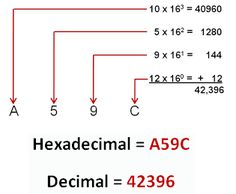 reebok shoes 9 \/5 as a decimal number to octal converter