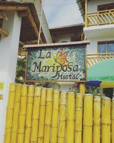 Hotel en Olón Ecuador #Olon #Ecuador #Travel #beach #OneBeach lamariposahostal.com