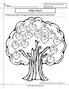 Circle the Words That are Noun Worksheet - Turtle Diary