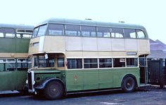 Wolverhampton Corporation: 542 1950 Guy Arab III Park Royal in Oxford Street bus parking compound Routemaster, Buses And Trains, Old Commercials, Double Decker Bus, Bus Coach, Wolverhampton, Oxford Street, Busses, Commercial Vehicle