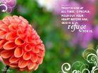 Refuge Desktop Wallpaper - Free Scripture Verses Backgrounds
