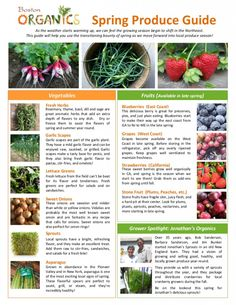 Spring Produce Guide pg1