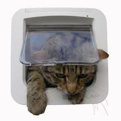 Get advice on microchip cat flaps! #microchipcatflap #cat #pet dog #catflap #petdoor #microchippetdoor