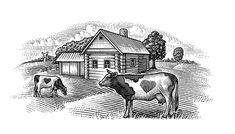 Woodcut illustration farm with cows by Ekaterina Shulzhenko