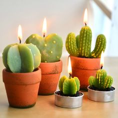 A new family member of the cute cactus candle. It is a great deco for ur lovely home. Diameter: 5 cm Height: 9 cm