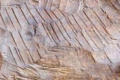 Bildergebnis für Holzoberfläche Texture, Crafts, Wood, Surface Finish, Crafting, Diy Crafts, Craft, Arts And Crafts, Patterns