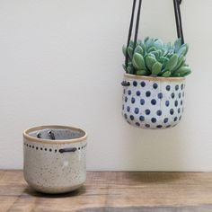 Hanging Wall Planter for Cactus
