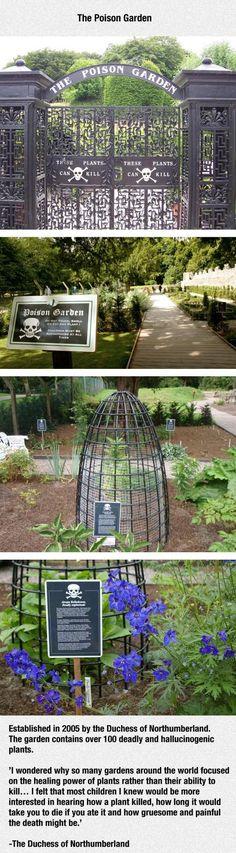 The Poison Garden Contains Over 100 Deadly Plants