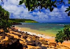 Hawaii | femina.hu
