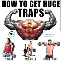 HOW TO GET HUGE TRAPS? Nothing says strength and power like big traps. Try these 6 expert-approved trapezius exercises to build your traps for explosive movement adds power to your training program. Look big, strong, and intimidating by building big musc Traps Workout, Gym Workout Chart, Gym Workout Tips, Workout Music, No Equipment Workout, Workout Women, Fitness Workouts, Fitness Motivation, Sport Motivation