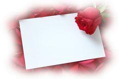 Flower Background Design, Frame Background, Flower Backgrounds, Wallpaper Backgrounds, Envelopes, Creative Flower Arrangements, I Love My Hubby, Rose Frame, Floral Letters