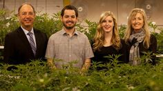 Meet the family behind the legal weed industry's first credit union: http://rol.st/1IQYbJa