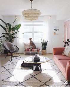 Living room with a pink couch
