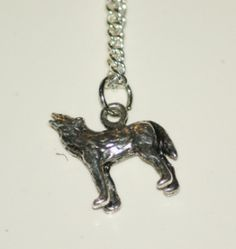 "Silver pendant with silver plated chain or a black cord.  Pendant 1/2"".  Necklace Length 9"""