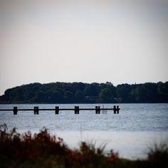 Med Torø i baggrunden  #visitfyn #fyn #nature #visitdenmark #naturelovers #nofilter #natur #denmark #danmark #dänemark #landscape #nofilter #assens #mitassens #vildmedfyn #fynerfin #vielskernaturen #sea #beach #visitassens #ocean #instapic #picoftheday #sommer #september #beautiful