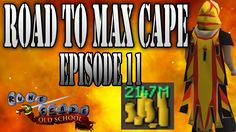 Road to Max Cape Ep. 11 | Pets Staking PvM Oldschool Runescape OSRS