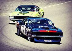 Trans Am Racing.