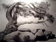 The Tree ~ Pencil Drawing