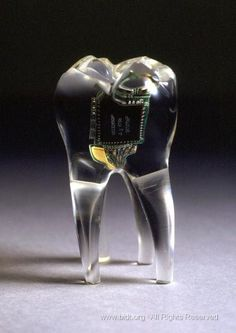 Audio Tooth Implant  Auger,James and Loizeau, Jimmy  http://en.bidt.org/artwork/385.html