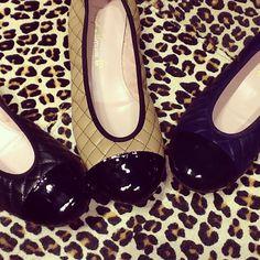 Preta, bicolor ou azul marinho? Ó dúvida cruel quando nós QUEREMOS PRETTY BALLERINAS DE DIA DOS NAMORADOS!!! #prettyballerinas #prettyballerinasbrasil #prettyvalentinesday #diadosnamorados