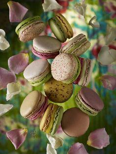 Pierre Hermé Les Jardins' macarons